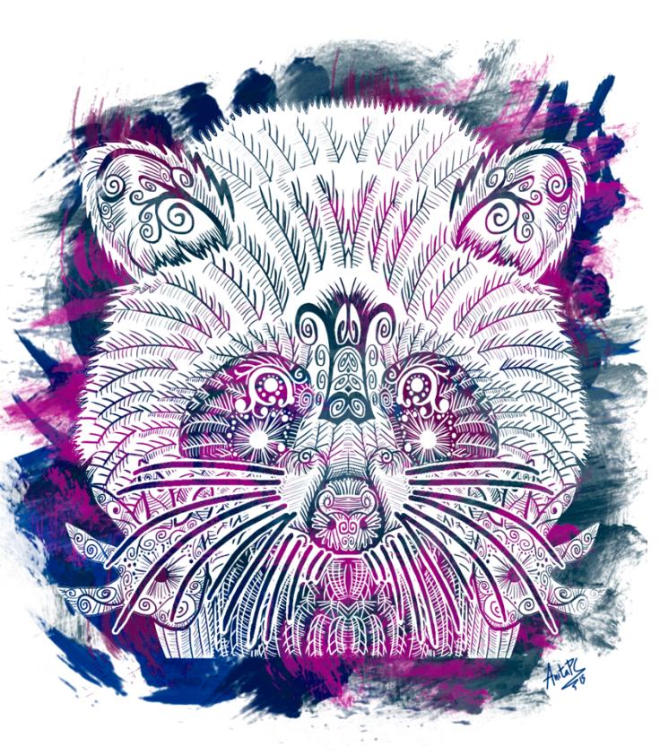 mapache lineado