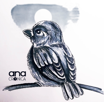 tranquil bird-01